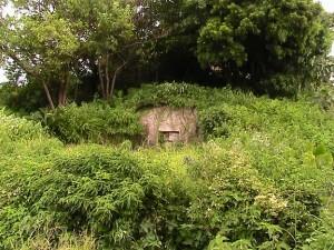 Choyu-Motobu-haka