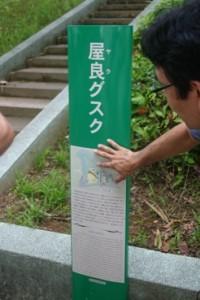 Yara-Chatan-Gusuku