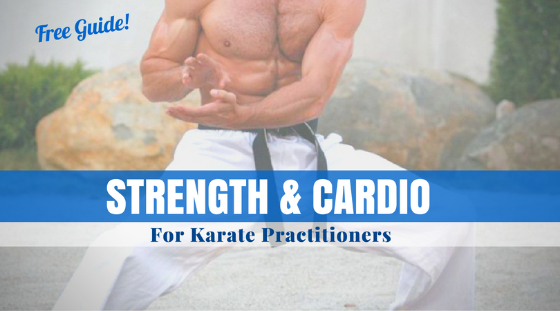 Free Guide Strength Cardio For Karate Practitioners