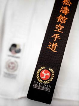 seishin_karate_black_belt